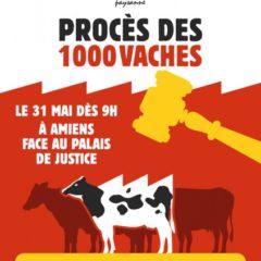 6 militants de la Confédération paysanne, dont un savoyard, jugés ce 31 mai à Amiens pour s'être opposés à la ferme des mille vaches
