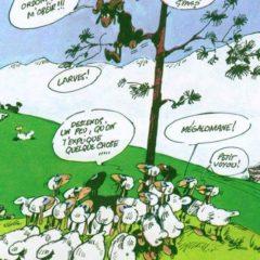 Actualité du «Génie des alpages» (de F'Murr)