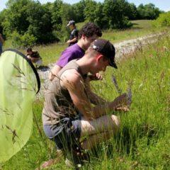 L'ISETA donne à l'enseignement agricole les couleurs et les parfums de l'agroécologie