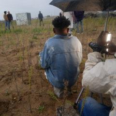 Des jeunes immigré-e-s des ASTI réalisent un documentaire pour parler de leurs parcours migratoires. Ils ont besoin de votre aide