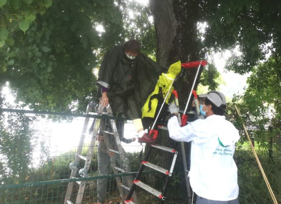 Obéissance civile des Amis de la Terre pour permettre la libre circulation piétonne le long du lac d'Annecy