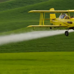 Pesticides, Qu'en faire ?