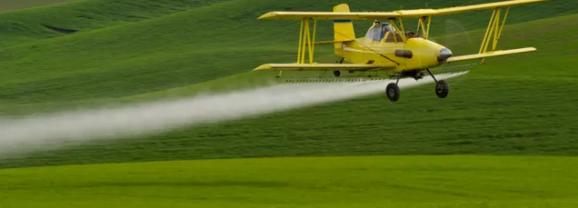 Pesticides, Qu'en faire ?